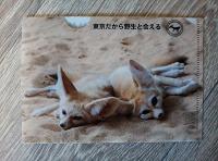 Отдается в дар Конверт из японского зоопарка
