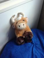 Отдается в дар Классная корова, 20 см