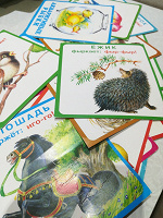 Отдается в дар Карточки обучающие для малышей
