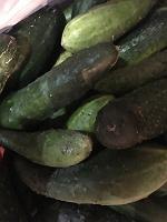 Отдается в дар Срочный дар -овощи