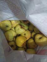 Отдается в дар яблоки
