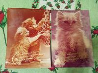 Отдается в дар Винтажные открытки с котиками