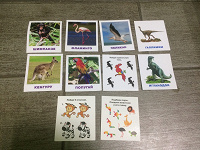 Отдается в дар Развивающие карточки для деток 10 шт