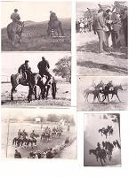 Отдается в дар Старинные фото с лошадьми