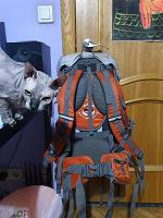 Отдается в дар Походный рюкзак Nordway Trekker 55l