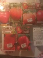 Отдается в дар Семена помидоров. Часть 2.