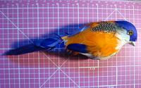 Отдается в дар птица декор магнит