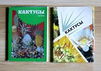 Отдается в дар Открытки с кактусами