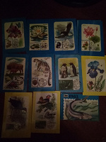 Отдается в дар Календарики почтовые марки