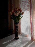 Отдается в дар Тюльпаны искусственные, ваза дерево