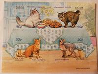 Отдается в дар Марки с кошками