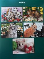 Отдается в дар Карманные календарики Кошки