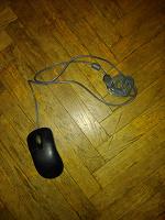 Отдается в дар Юсб мышь