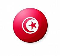 Отдается в дар Сувенир из Туниса