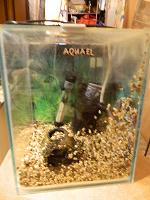 Отдается в дар аквариумы 5 и 80л (срочно)