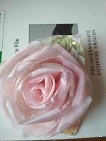 Отдается в дар Цветочки