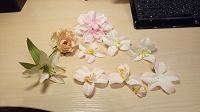 Отдается в дар Декоративные цветочки для декора или на хм