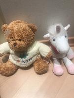 Отдается в дар Мягкие игрушки медведь и единорожка