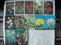 Отдается в дар Календарики. Цветы 1987-1990