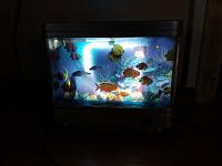 Отдается в дар Светильник-аквариум