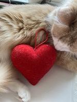 Отдается в дар Сердце игрушечное