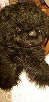 Отдается в дар Мягкая игрушка Собака 80 см