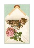 Отдается в дар Календарный кот в конверте (для коллекционеров).