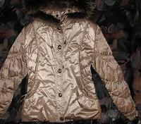 Отдается в дар Куртка демисезон