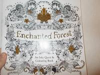 Отдается в дар Раскраска-антистресс «Зачарованный лес»