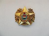 Отдается в дар Знак Совецко-Венгерские ученья