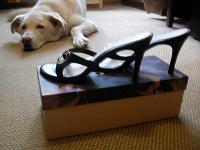 Отдается в дар туфли на высоком каблуке Lucca