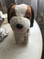 Отдается в дар Интерактивный щенок
