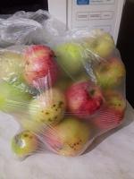 Отдается в дар Дачные яблочки!