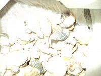 Отдается в дар ракушки мелкие на ХМ