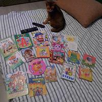 Отдается в дар Детские книжки, первые книжки БУ