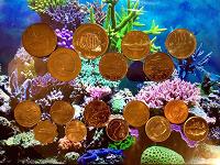 Отдается в дар Монетный улов