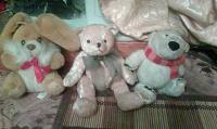 Отдается в дар Отдам в дар медвежат.