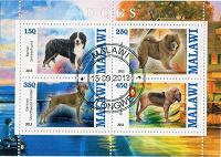 Отдается в дар П.б. «Собаки» (Малави)