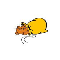 Отдается в дар Кот в мешке или 9 кг лакового счастья