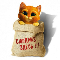 Отдается в дар косметический кот в мешке