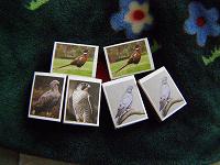 Отдается в дар Для коллекционеров — спички с птицами
