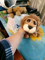 Отдается в дар Мягкий дар- игрушки и рюкзак.