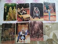 Отдается в дар Календарики цирк