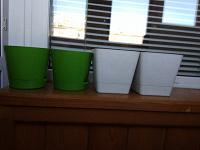 Отдается в дар Горшочки под комнатные растения