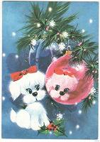 Отдается в дар Подарок от дедушки мороза для владельцев собак