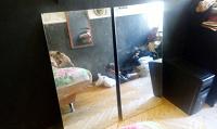 Отдается в дар Два зеркала 49Х101