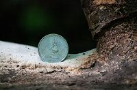 Отдается в дар Пять рублей Бухарест