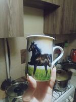 Отдается в дар Кружка с конём