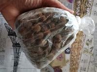 Отдается в дар Сухой корм для собак мелких и средних пород.