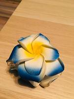 Отдается в дар Заколка цветок